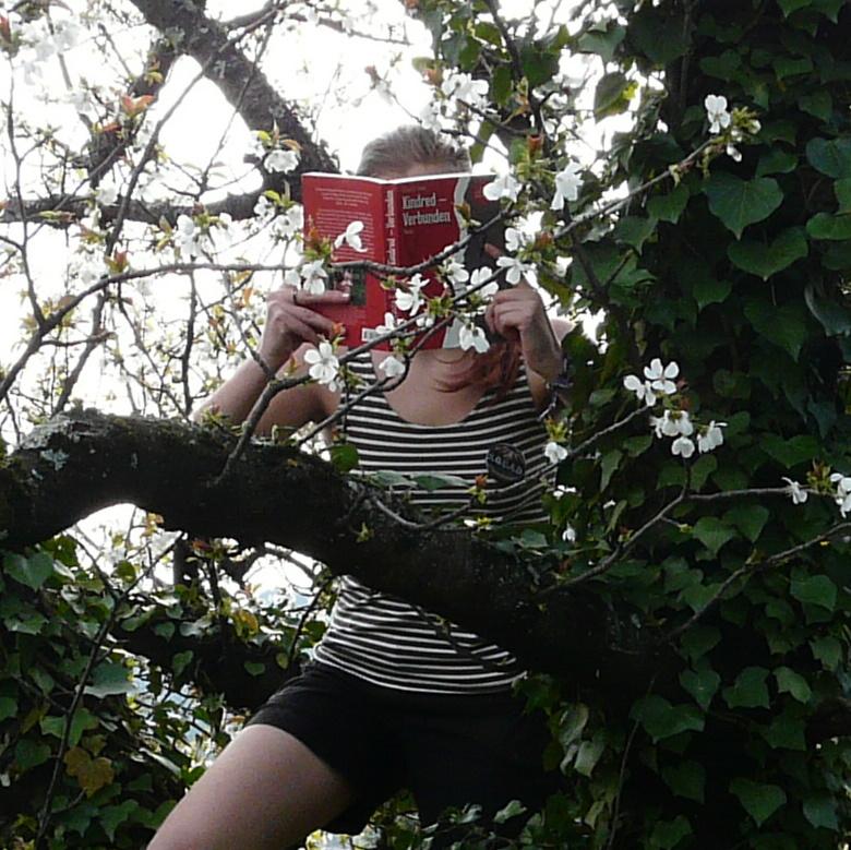 personne lisant Kindred − Liens de Sang d'Octavia Butler juchée dans un cerisier en fleurs