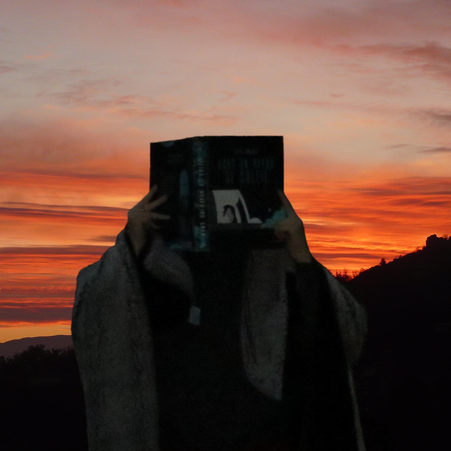 personne lisant Dans un Rayon de Soleil de Tillie Walden devant un lever de soleil enroulée dans un plaid