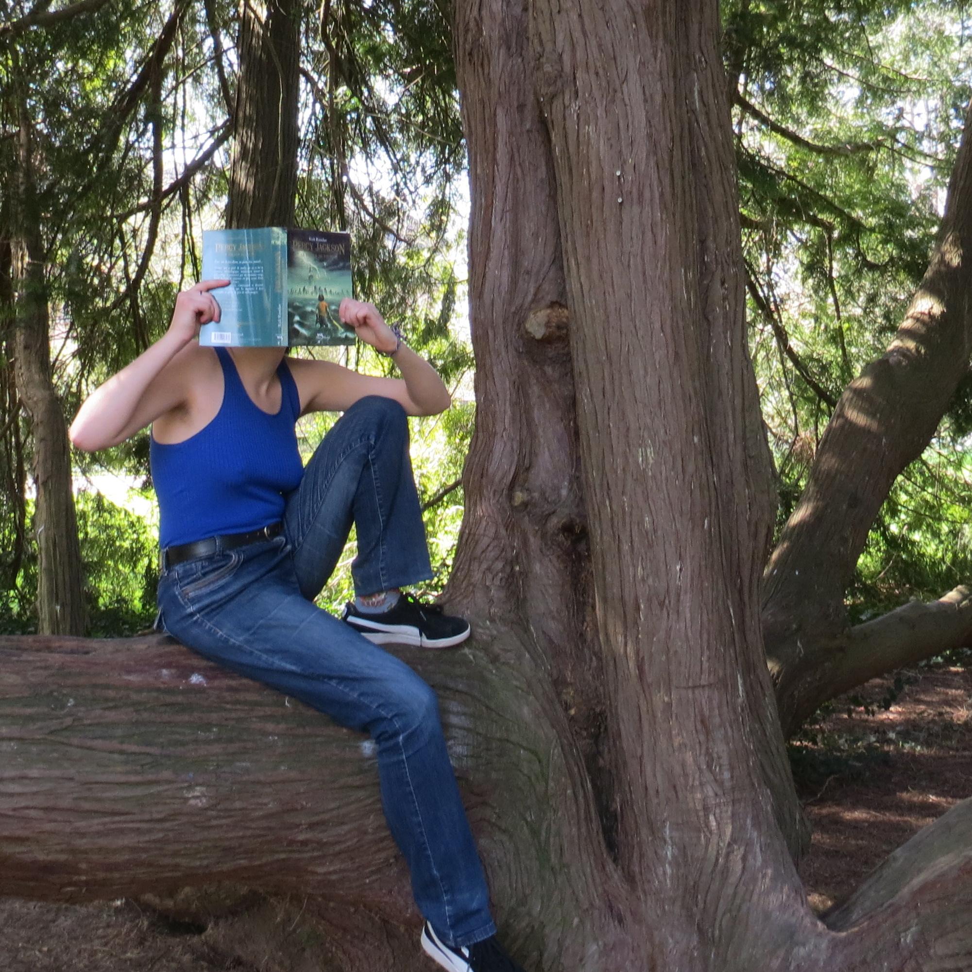 personne en bleu lisant Percy Jackson tome 1 de Rick Riordan dans un arbre aux nombreuses branches